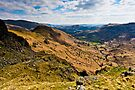 View Down Grasmere Common, Cumbria. UK by David Lewins