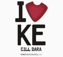 Kildare by LoveYourCounty