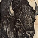 The Black Buffalo by Lynnette Shelley