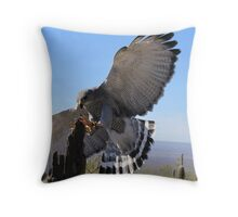 Gray Hawk ~ Brake Check! Throw Pillow