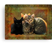 Four Kitty Pile-up Canvas Print