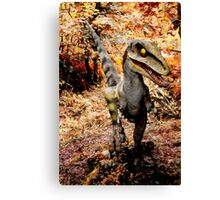 If you go down to the woods today ..... Canvas Print