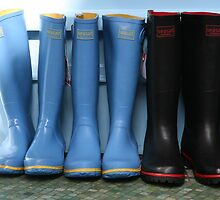 Wellingtons by Jeff  Wilson