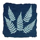 Five Ferns Cyanotype by Bethany Helzer