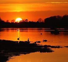 Sunset At Bosham by Jane Burridge