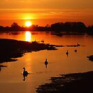 Bosham Sunset by Jane Burridge