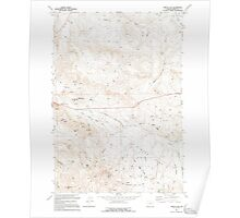 USGS Topo Map Oregon Virtue Flat 281976 1994 24000 Poster