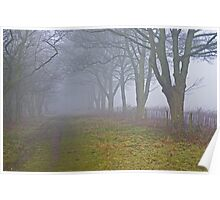 Misty Fox Covert. Poster