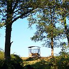 Campagne de Nontron, Dordogne by Liz Garnett