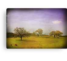 As Time Slowly Goes By Canvas Print