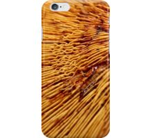 Wrinkles in the Linework iPhone Case/Skin