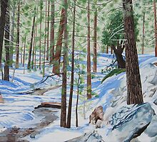 WINTER IN THE SAN JACINTO MOUNTAINS by Barry Kadische