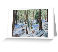 WINTER IN THE SAN JACINTO MOUNTAINS Greeting Card
