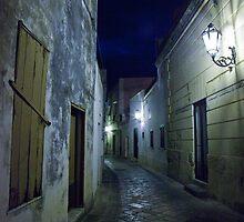 Street at Dark by Rene Hales
