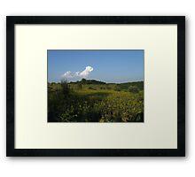 Governor Dodge Prairie  Framed Print