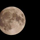 mates moon by lurch