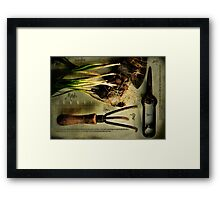 Gardening by the Moon Framed Print