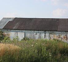 Old White Barn In Pennsylvania by Cheryl Pingatore