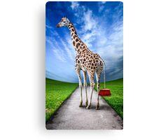 Giraffe Canvas Print