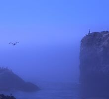foggy ocean by Marianna Tankelevich