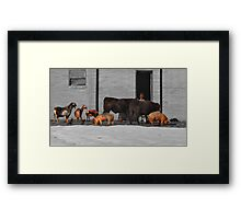 """"""" Will The Meeting Come to Order! """" Framed Print"""