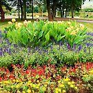 Spring Lake Garden  by fiat777