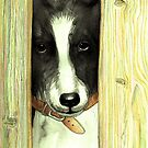 illustration for Nog the Dog book by Jan Whiten by annamora