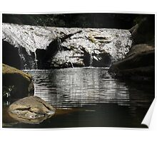 Goldies stream and bush walk Poster
