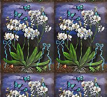 White Orchids by Kira Yustak