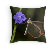 Glasswing at dawn..... Throw Pillow