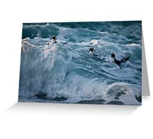 Fiordland Crested Penguin - New Zealand Greeting Card