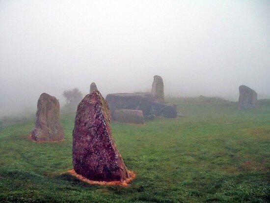 Living Stones by Stuart  Fellowes