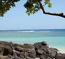 Rocky beach of Mauritius by rajeshbac