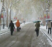 Winter: Jinan, China by Phillip Wayne