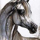 the grey arabian horse portrait by tarantella
