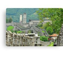 Swiss defence Canvas Print