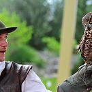 falconer by neil harrison
