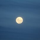Super Moon (Perigee Moon) - 19th March 2011 by Vanessa Barklay