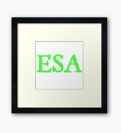 ESA Etobicoke School of the Arts Framed Print