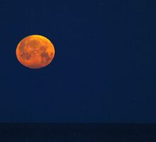 """""""Super Moon"""" over Lake Michigan by BarbL"""