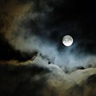 Full Moon Over Lilydale - Tasmania by RainbowWomanTas