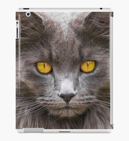 Bright Eyes iPad Case/Skin