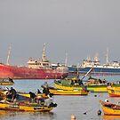 Coquimbo Bay by Daidalos