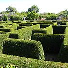 Maze Maddness by Travel-Hop
