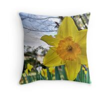Narcissus Glory Throw Pillow