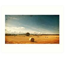 Rural Nature Countryside Scenic Landscape Ireland Art Print