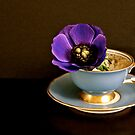 coffee with anemone  by anisja
