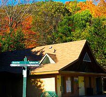 Autumn chalet by MarianBendeth