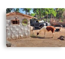 Old rural school but not real II Canvas Print