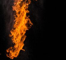 Fire Photography is the BEST! by absolutegent